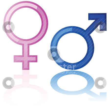 Male and female symbols stock vector clipart, Glossy illustration of a male and a female symbol reflected over a white background by Bruno Marsiaj