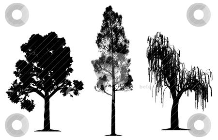 free oak tree clip art. vector of we art, clipart and