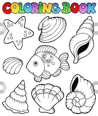 Coloring book with seashells stock vector clipart, Coloring book with seashells - vector illustration. by Klara Viskova