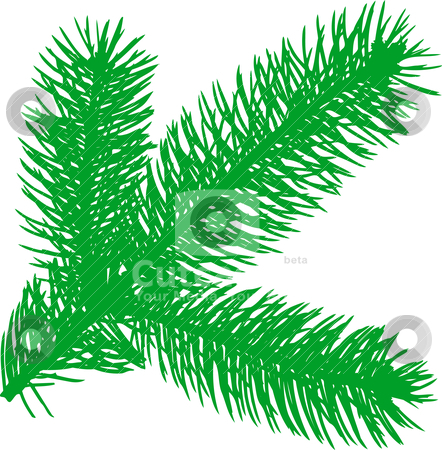 Firtree green element  stock vector clipart, Vector illustration: Firtree green element  by olinchuk