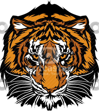 Tiger Head Graphic Mascot  stock vector clipart, Graphic Mascot Image of a Tiger Head with Whiskers by chromaco
