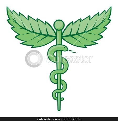 Caduceus with leaves stock vector clipart, Single snake caduceus with mint leaves isolated on white background. by fractal.gr