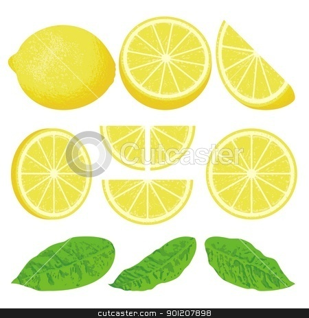 Lemon stock vector clipart, A whole lemon and slices at different angles, also three versions of leaves. by fractal.gr