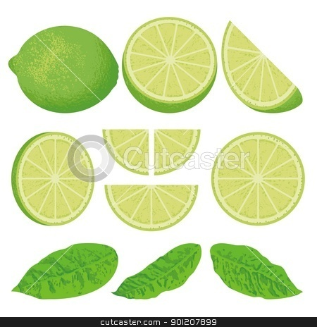 Lime stock vector clipart, A whole lime lemon and slices at different angles, also three versions of leaves. by fractal.gr