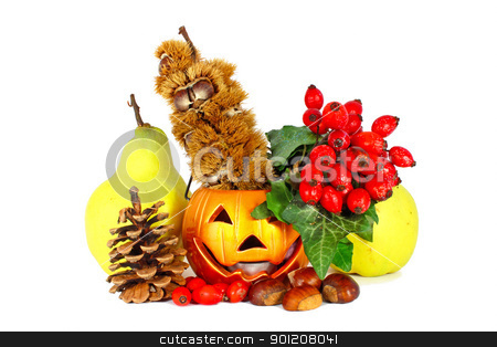 Colors of autumn stock photo, Some colorful autumn fruits with little lamp isolated on white by Borislav Marinic