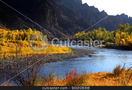 Yellowstone national park stock photo, Beautiful autumn scene in Yellowstone national park  by Sreedhar Yedlapati