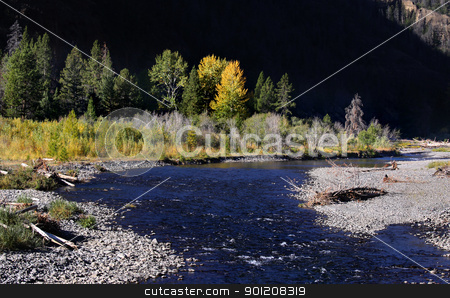 Yellowstone national park stock photo, Beautiful autumn scene in Yellowstone national park  by Sreedhar Yedlapati