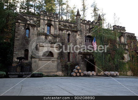Old Estate stock photo, An old estate covered in vines and the United States flag by Kevin Tietz
