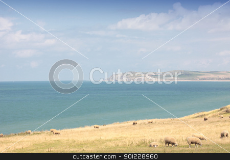 landscape of the Opal Coast in France stock photo, landscape of the Opal Coast in France by Chretien