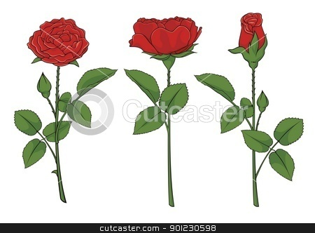 Roses stock vector clipart, Illustration of three red roses isolated on white background. by fractal.gr