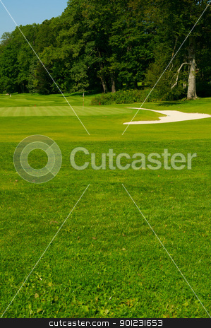 Golf Course in Forest  stock photo, Golf Course in Forest - Golf Green With Flag and Bunker by JAMDesign