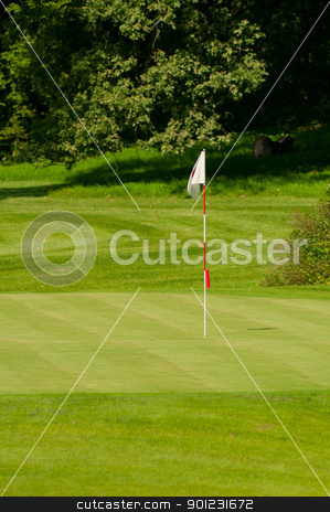 Golf Green With Flag stock photo, Golf Course in Forest - Golf Green With Flag by JAMDesign