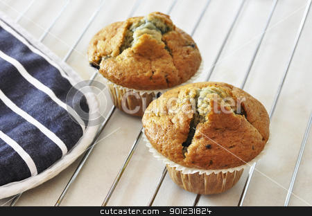 Two blueberry muffins stock photo, Two freshly baked blueberry muffins by Dutourdumonde