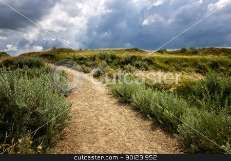Trail in Badlands in Alberta, Canada stock photo, Walking trail in Badlands with dramatic sky in Dinosaur provincial park, Alberta, Canada by Elena Elisseeva