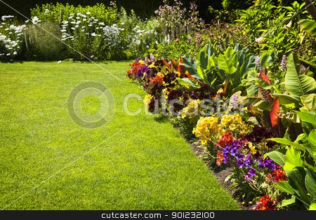 Colorful garden flowers stock photo, Beautiful colorful flower garden with various flowers by Elena Elisseeva