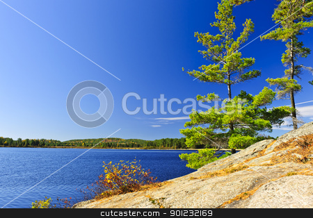 Lake shore in Ontario, Canada stock photo, Rocky shore in wilderness of Lake of Two Rivers, Algonquin Park, Ontario, Canada by Elena Elisseeva