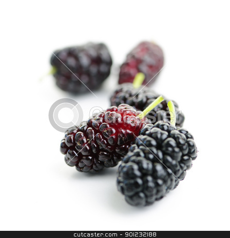 Mulberries close up stock photo, Few ripe mulberry berries close up on white background by Elena Elisseeva