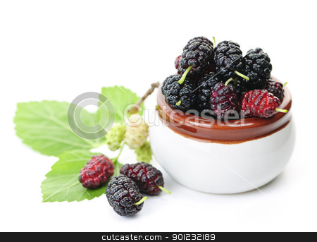 Fresh mulberries stock photo, Ripe mulberry berries in a bowl on white background by Elena Elisseeva