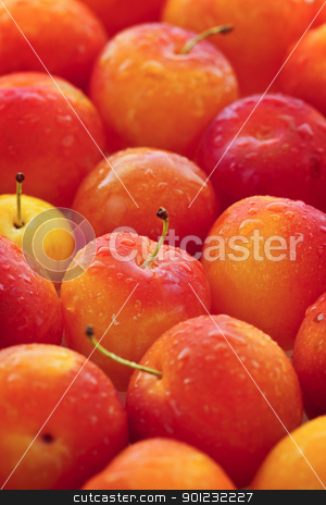 Plums background stock photo, Freshly picked juicy plums as a background by Elena Elisseeva