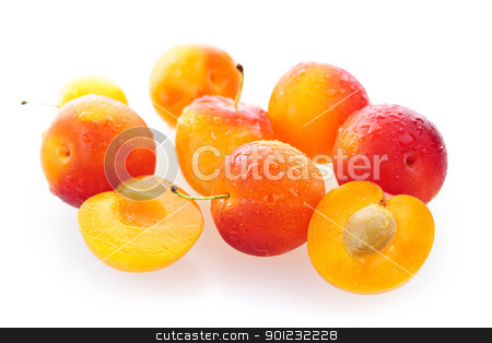 Yellow plums stock photo, Several yellow plums isolated on white background by Elena Elisseeva