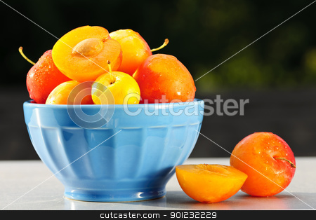 Plums in bowl stock photo, Fresh yellow plums in a bowl outside by Elena Elisseeva