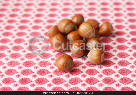 Hazelnuts stock photo, Hazelnuts by Lasse Kristensen@gmail.com
