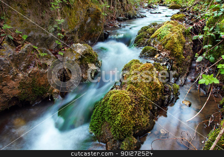 Forest waterfall stock photo, stream between stones in green forest landscape by Julija Sapic