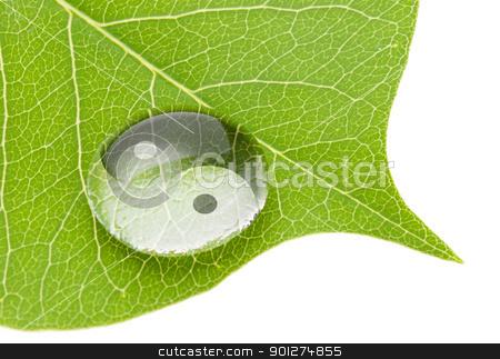 Yin yang symbol on water drop stock photo, Yin yang symbol on water drop on fresh green leaf by Lawren