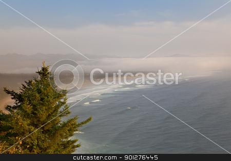Soft Oregon Coast stock photo, Single pine tree overlooking a soft fog and cloud covered oregon coastline by bobkeenan