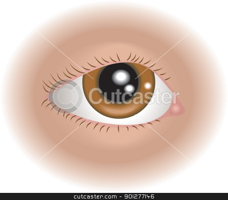 eye illustration stock vector clipart, An illustration of a human eye, no meshes used  by Christos Georghiou