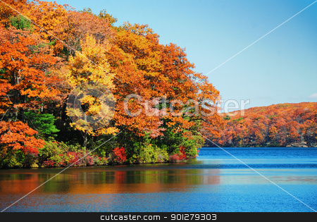 Autumn foliage over lake stock photo, Autumn colorful foliage over lake with beautiful woods in red and yellow color. by rabbit75_cut