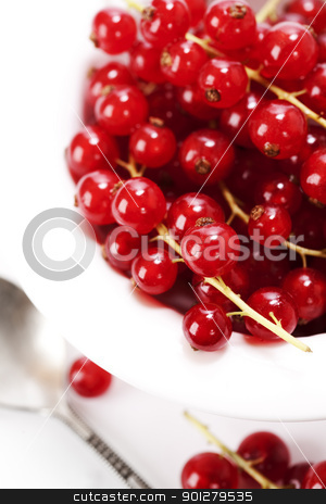 Red currant stock photo, Red currant in a bowl over white  by klenova