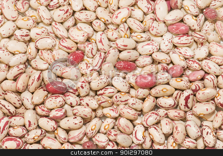 Jewish ecological stock photo, showing newly harvested beans texture  by luiscar