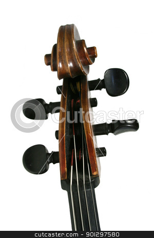Cello Scroll stock photo, A cello scroll isolated on white by Tyler Olson
