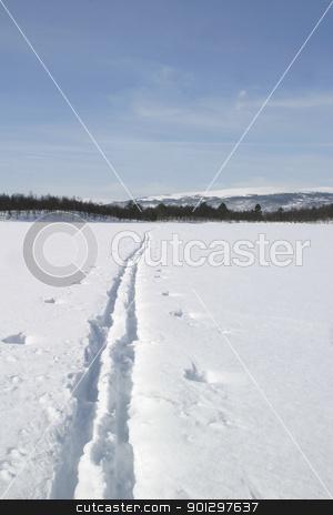 Ski Trail stock photo, Ski Trail across a frozen lake by Tyler Olson