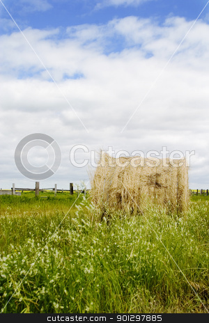 Hay Bail stock photo, Large round bail on the prairie landscape by Tyler Olson