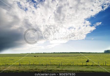 Prairie Summer Landscape stock photo, Prairie landscape with a green field by Tyler Olson