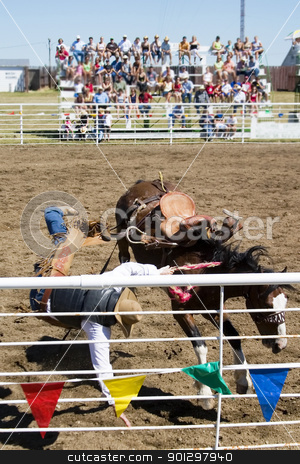 Saddle Bronc stock photo, Saddle Bronc riding at the Herbert Rodeo by Tyler Olson
