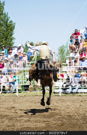 Saddle Bronc stock photo, Saddle Bronc riding at a small town rodeo by Tyler Olson