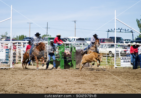 Steer Wrestling stock photo, Steer Wrestling at a small town rodeo by Tyler Olson