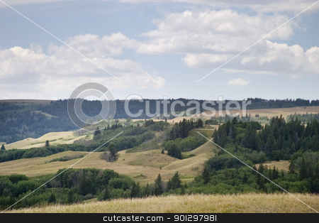 Cyrpess Hills stock photo, Cypress Hills Provincial Park Landscape by Tyler Olson