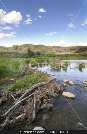 Beaver Dam stock photo, Beaver dam on the swift current creek near Stewart Valley by Tyler Olson