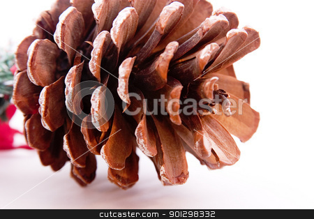 Pine Cone stock photo, Large pine cone christmas decoration. by Tyler Olson