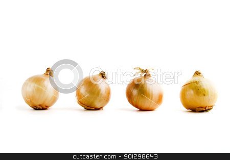 Onion Row stock photo, four onions lined up in a row by Tyler Olson