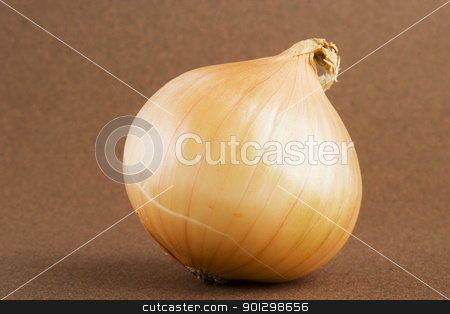 Onion stock photo, A single onion on a dark background by Tyler Olson