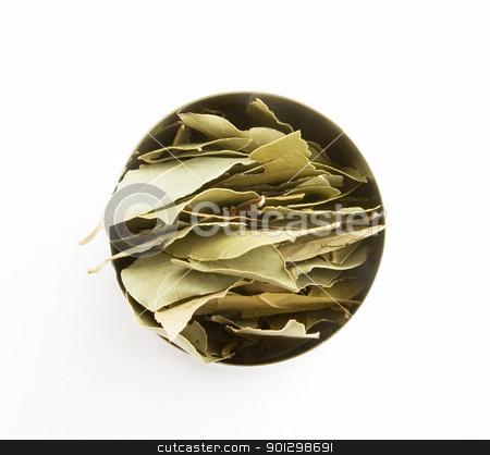 Bay Leaves stock photo, Bulk Bay Leaves (Laurus nobilis) by Tyler Olson