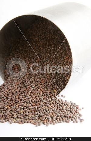 Black Mustard stock photo, Bulk black (Brassica hirta) mustard spilling froma container by Tyler Olson