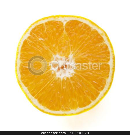 Orange Slice Detail stock photo, Detail of an orange sliced in half. by Tyler Olson