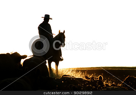 Cattle Round Up stock photo, Cowboys on a cattle round up. by Tyler Olson