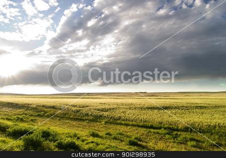 Prairie Sky Landscape stock photo, Prairie Lanscape with a vivid sky by Tyler Olson